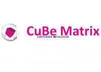 CuBe Matrix