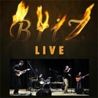 Концерт в Берлине Группа BriZ 1 марта 2014