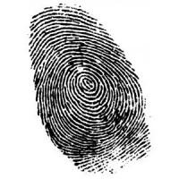 В Германии у иммигрантов будут брать отпечатки пальцев
