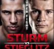 Felix Sturm vs Robert Stieglitz 08.11.2014