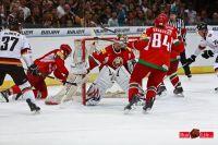 Eishockey_Deutschland_Weissrussland_25_04_2011_16